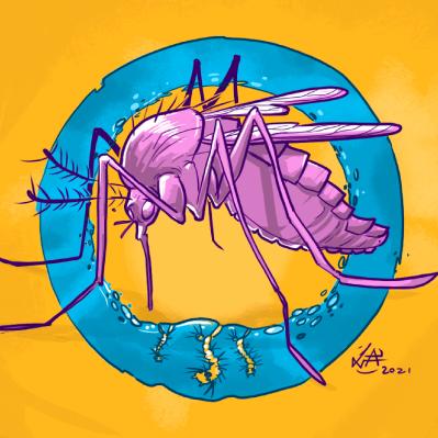 #115 Pra que existem os mosquitos?